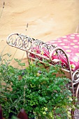 Fresh herbs beside garden chair