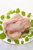 Raw swordfish steaks with watercress