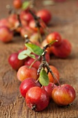 Bunches of red crab apples