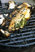 Stuffed salmon trout on barbecue