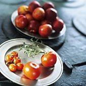 Tomatoes and plate of fruit