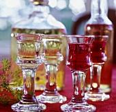 Cherry liqueur and herb liqueur