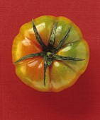 A beefsteak tomato against a red background