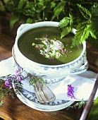 Nettle soup with morels