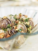 Snails with herbs, onions and tomatoes