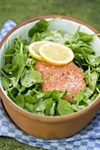 Salmon fillet with baby spinach