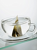 Hot water and tea bag in glass cup