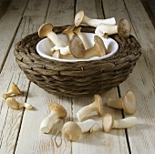 King oyster mushrooms in and in front of woven basket