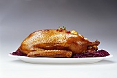 Roast goose with red cabbage and cranberries