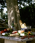Cheese, baguettes and red wine on table under a tree