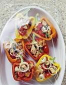 Gefüllte Paprika mit Mozzarella, Thunfisch & Brot (noch roh)
