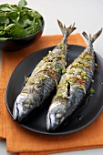 Grilled mackerel with chilli and spring onions