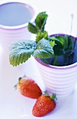 Two strawberries and strawberry leaves