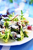 Mixed salad leaves with Gorgonzola and walnuts