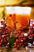Kompot z suszu (Dried fruit compote for Christmas, Poland)