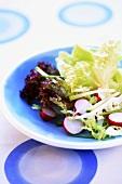 Frühlingssalat mit Radieschen