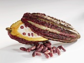 Halved cacao fruit pod with cocoa beans