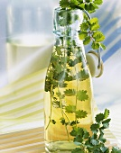 Home-made salad burnet vinegar