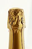 Sparkling wine bottle seal