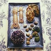 Seafood: shellfish, sea urchin, mantis shrimps, oysters