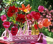 Red tulips in small glass bottles on pink tray