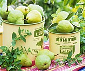 Pears in tins and mint