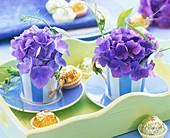 Blaue Hortensien in gestreiften Espressotassen und Pralinen