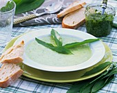 Ramsons (wild garlic) soup with white bread