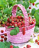 Raspberries in pink basket with handle