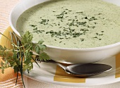 Creamed herb soup with sour cream