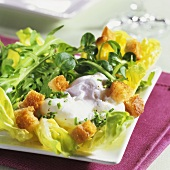 Salad with poached egg and bread
