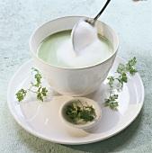 Chervil soup
