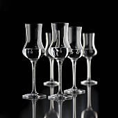 Several glasses of grappa