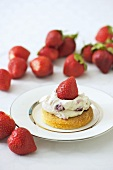 Shortbread with yoghurt cream and strawberries