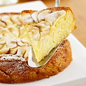 Piece of apple and almond cake on cake server