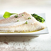 Fillet of turbot with vegetables