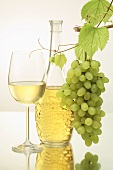 White wine in glass and bottle, green grapes
