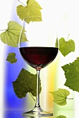 Glass of red wine in front of coloured bottles and vine leaves