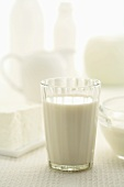 Glass of milk and various dairy products