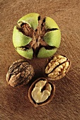 Walnuts, shelled and unshelled (overhead view)