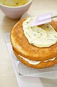 Spreading sponge cake with passion fruit cream