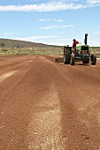 Tractor working in rooibos field (South Africa)