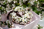 Wreath of apple blossom