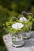 Lady's mantle and roses in glasses