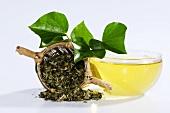 Getrockneter Efeu im Teesieb mit Tee