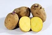 Several potatoes (La Bonnotte), whole and halved