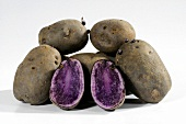 Blue potatoes (variety 'Blue Salad Potato'), whole and halved