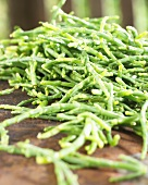 Marsh samphire (Salicornia)