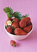 Fresh strawberries with leaves and flower in bowl