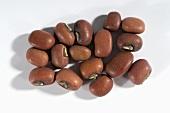 Several azuki beans